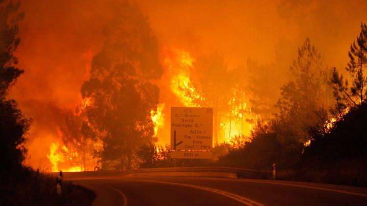 portugal forest fires 2017